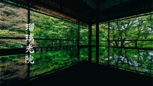 人気の京都 瑠璃光院 夜の特別拝観 ツアー「青もみじのライトアップ」