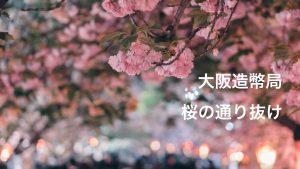 2018年 大阪造幣局の「桜の通り抜け」(4月12日 開花情報 散り始め)|Photo Journal Vol.57
