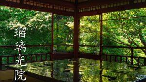 【2018年】京都「瑠璃光院」春の特別拝観で新緑の青もみじの美しさを実感
